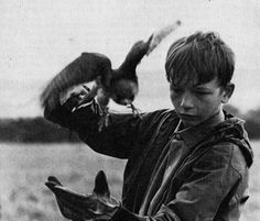 David Bradley and a falcon| still from a film called Kes (1969).