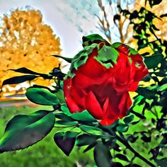 #mag_mobileartgroup #editgrammer #artistry_flair #mobiography #photoart #photooftheday #editfromthesoul #theappwhisperer #ipadart #digitalartist #digitalart #iphoneography #iphonephotography #outofthephone #artmobile #icapturemobile #mobileshotz_ #mobile_phonography #iphoneonly #outofiphone #photooftheday #showcase