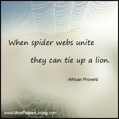 """""""When spider webs unite  they can tie up a lion.""""  -African Proverb"""