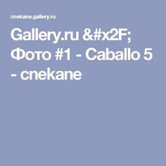 Gallery.ru / Фото #1 - Caballo 5 - cnekane