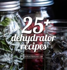 25  Dehydrator Recipes/Dehydrator recipe round-up - The Real Food Guide