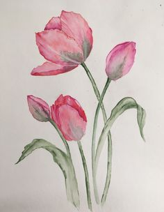 Tulips – Katka Gaspi – Join in the world of pin Watercolor Projects, Watercolor Cards, Watercolor Flowers, Watercolor Paintings, Watercolors, Tulip Drawing, Tulip Painting, Painting & Drawing, Fleurs Art Nouveau