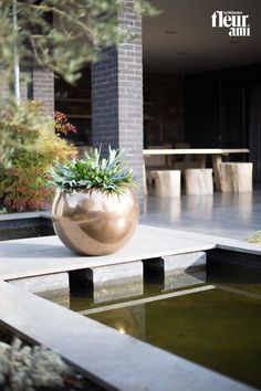 GLORY ball-shaped planter by fleur ami ▪ GLORY kugelförmiges Pflanzengefäß von fleur ami