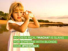 Mae Yodo Y Macha Algunas De Las Palabras Que Aprenden Los Extranjeros Con El Tico Talk