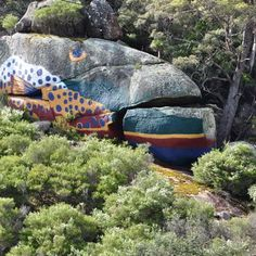 Derby Camping Ground - North East Tasmania Tourism