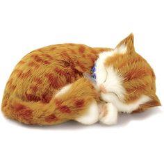 Perfect Petzzz Gato Orange Tabby - Imex
