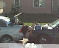 Amazing Google street view #2