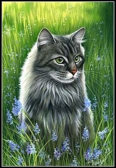 View album on Yandex. Most Beautiful Animals, Beautiful Cats, Cute Cats And Kittens, Cool Cats, Cat Character, Animal Coloring Pages, Cat Crafts, Domestic Cat, Cat Drawing
