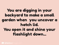 You are digging in your backyard to make a small garden when you uncover a hatch lid. You open it and shine your flashlight down...