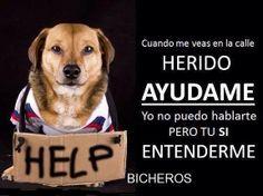 Ayudame!