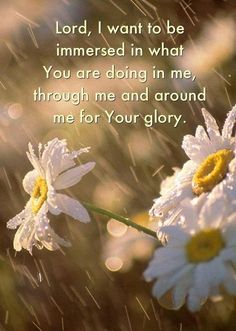 Lord, I want to be immersed in what You are doing in me, through me and around me for Your glory.