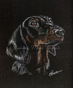 Daschund Art drawing hand signed print. A unique unusual cute dog lover gift in Home, Furniture & DIY, Home Decor, Wall Hangings | eBay