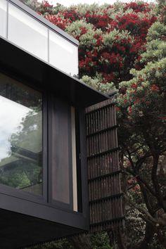 Kawakawa House Piha by Herbst Architects