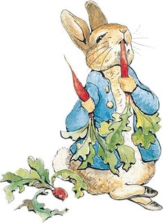 Peter Rabbit Wall Art Sticker. Quantity 1 sticker. Not suitable for walls with wipeable paint we include a sample to try before fitting. Suitable for smooth interior exterior flat walls, wood, and glass. | eBay!