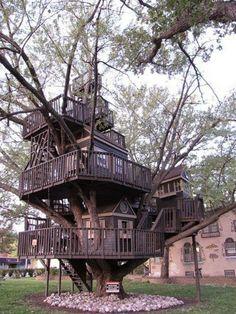 (2) Wonderful Tree House Photo. - Bilder Land