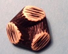 Vintage Realistic Buffed  Celluloid Button Wood Logs