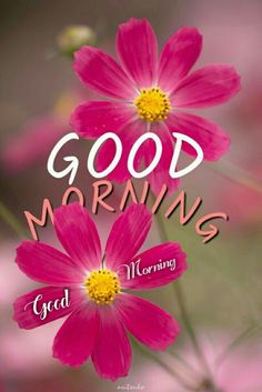 good morning beautiful good morning good morning quotes good morning quotes inspirational good morning quotes for him good morning wishes good morning beautiful good morning greetings good morning images Good Morning Tuesday, Latest Good Morning, Good Morning Cards, Good Morning Funny, Good Morning Picture, Good Morning Friends, Good Morning Messages, Good Morning Good Night, Good Morning Wishes
