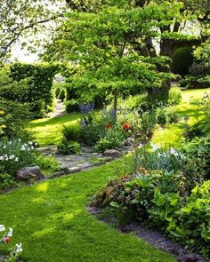 44 beautiful small garden and flower design ideas you might love 24 Woodland garden, Shade garden, G