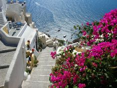 Spring is one of the best seasons to visit Santorini! It's a treat you won't be able to find in any other season. Best Seasons, Greek Islands, Greece, Tourism, Sidewalk, Old Things, Landscape, Architecture, Oia Santorini