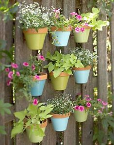 Tenha um jardim florido em sua parede - Vila do Artesão