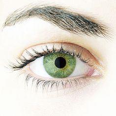 Contact Day 30 Coloured Lenses Jade Green 24,49€ #contacts