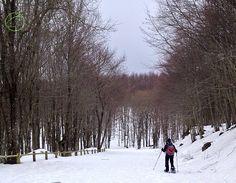 snowshoeing in Appennino Tosco-Emiliano