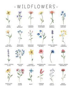 Tiny Flower Tattoos, Birth Flower Tattoos, Flower Tattoo Designs, Cute Tattoos, Mini Tattoos, Small Tattoos, Tatoos, Blatt Tattoos, Flower Meanings