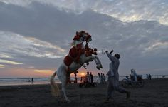 A man and his decorated horse on Clifton beach in Karachi, Pakistan (Reuters)