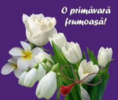 Clara Alonso, Beautiful Pictures, Bouquet, Spring, Day, Plants, Martie, Romania, Motivation