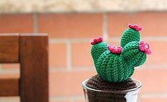 Spiegazioni piante grasse a uncinetto. | Cucito Creativo - Tutorial gratuiti - Idee Creative - Uncinetto - Riciclo Creativo | Bloglovin'