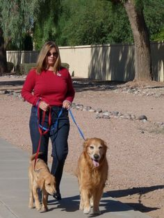 We cater our services to any on-the-go professional's schedule. Clients who travel frequently for business or work long hours depend on our loving dog walkers to give their beloved pets the much needed TLC while they are away. Not only do their dogs enjoy the extra attention, but our clients have a peace-of-mind knowing that their pets are well taken care of.  Our clients can concentrate on their work guilt-free. Many of our busy professional clients enjoy the convenience of reserving dog...