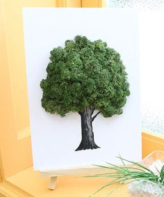 Take a look at this Green Moss Framed Air-Purifying Tabletop Décor today! Moss Wall Art, Moss Art, Nest Company, Wood Dust, Outdoor Art, Air Purifier, Projects For Kids, Art For Kids, Living Room Decor