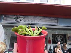 Vor dem Veggilicious Shop in Dortmund