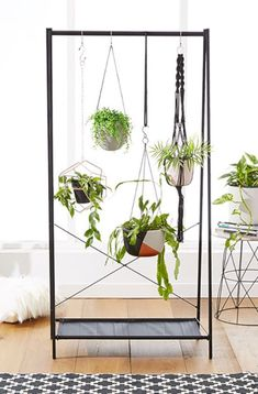 cool 42 Stunning Indoor Plants Ideas For Your Living Room And Bedroom