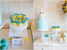 beautiful owl themed baby shower via tomkat studios