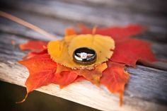Beautiful fall leaves under the rings! Photo by Kelly T. #MinneapolisWeddingPhotographers