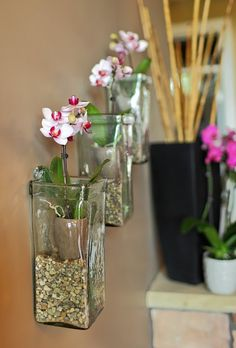 IMG_28812. Orchid care and creativity