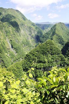 Ile de la Reunion wildjune.com