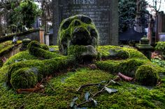 Moss-covered skull and crossbones on a gravestone