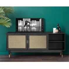 Déco vert Cane buffet in front of a green wall in a tropical lounge Using Popular Rose Varieties In Tv Unit Furniture, Deck Furniture, Steel Furniture, Buffet Teck, Boho Chic Living Room, Cantilever Chair, Home Room Design, Mid Century Modern Furniture, Upholstered Chairs
