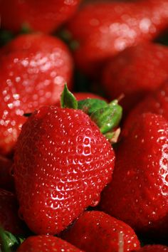 Our strawberries soak up sunshine 24 hours a day, no wonder they are the sweetest you'll ever taste.