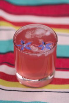 Rhubarb gin recipe