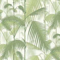 Cole and Son Palm Jungle 95/1001