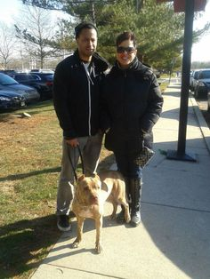 Volley Adopted!