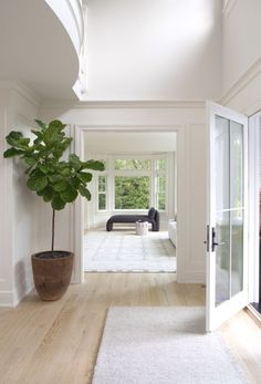 WOODSIDE — Kerri Rosenthal Interiors Bright white walls in the entryway + light wood floors + fig leaf tree in the entryway + double hei Small House Renovation, Home Renovation, Home Remodeling, Small House Interior Design, House Design, White House Interior, White Wall Lights, Light Wooden Floor, 17 Kpop