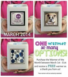 Celebrating 10 years with Scentsy. One warmer so many different ways, just add a new frame! Order March warmer of the month for $31.50 and get a second warmer for Free as our Thank You! #casiestevenson #justawickaway #scentsygratitude http://casies.scentsy.us www.justawickaway.com