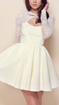 Lace collar skater dress