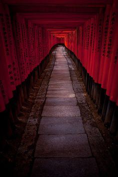 Fushimi Inari, Kyoto, Japan.  I highly recommend going to this shrine each pole is individually inscribed with thanks from people and businesses throughout Japan