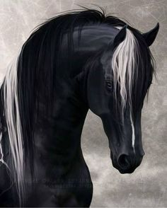 Digital Horse Art by Aura Heiskanen Horses Mad Horses And Dogs, Wild Horses, Animals And Pets, Kids Animals, Painted Horses, Horse Photos, Horse Pictures, Most Beautiful Animals, Beautiful Horses