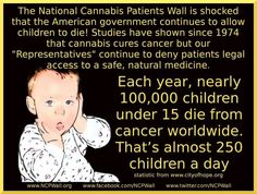 250 children die each day because cannabis is illegal. Shame on us.